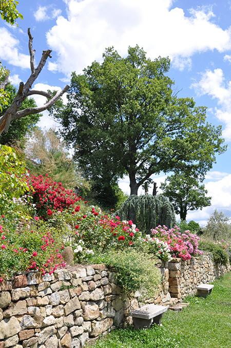Terre et passion am nagement entretien espace for Entretien jardin loiret